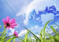 花朵和地球设计图片(22张)