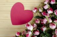 温暖的爱心与漂亮的花朵图片(18张)