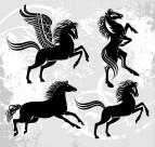 马的剪影与插画图片(2张)