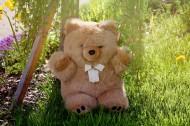 可爱的玩具熊图片(15张)