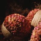 记忆中的鲜花图片(8张)