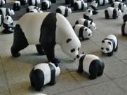 纸糊熊猫展图片(16张)