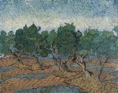梵高风景绘画之树图片(16张)