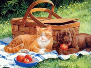 猫咪和它的小伙伴手绘图片(35张)
