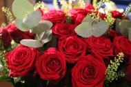 好看的红玫瑰花图片(14张)