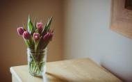 漂亮的插花图片(12张)