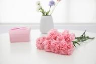 母亲节鲜花康乃馨图片(9张)