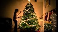 装饰美丽的圣诞树图片(16张)
