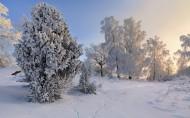 冬季大雪覆盖的风景图片(12张)