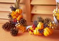 秋季花朵素材图片(11张)