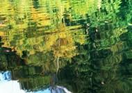 水中美丽风景图片(7张)