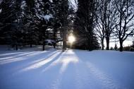 美丽的雪景图片(11张)