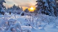 白雪皑皑的景色图片(11张)