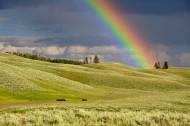 七色的彩虹图片(15张)