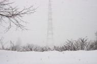 冬天的雪景图片(10张)