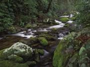 溪流图片(21张)
