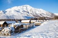 寒冷的冬季雪景图片(15张)