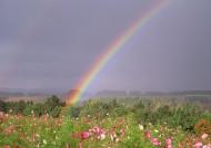 美丽彩虹图片(6张)