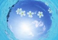 缤纷碧蓝的海滨图片(34张)