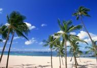 海岸沙滩图片(21张)