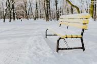 雪地里的公园图片(10张)