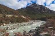 流淌的河流图片(18张)