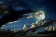 月圆之夜 图片(23张)