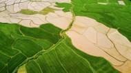 乡村田野风景图片(14张)