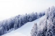 自然雪景风景图片(14张)