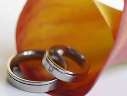 如何查询双方是否结婚证
