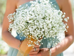 清新唯美满天星新娘手捧花
