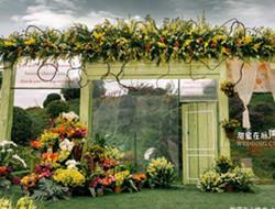 草坪婚礼上的浪漫现场