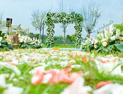 户外浪漫清新婚礼现场图片
