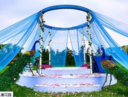 户外孔雀色草坪婚礼