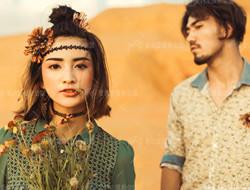 沙漠之恋 仙人掌爱情
