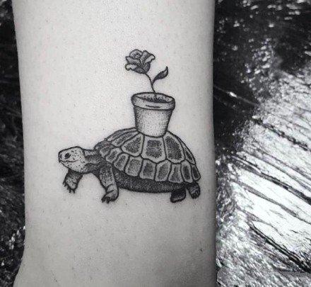 一波小海龟主题的乌龟纹身图片