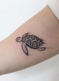 一波小海龟主题的乌龟纹
