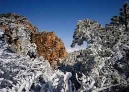 唯美安徽黄山自然风景图片(13张)