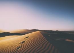 干旱的沙漠图片(14张)