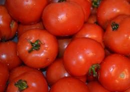 鲜红的西红柿图片(12张)
