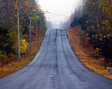 合肥大姚路面临改造 网友呼吁保护最美乡村公路