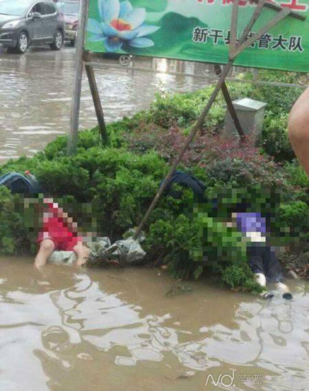 江西两名小学生暴雨中在路边被电死