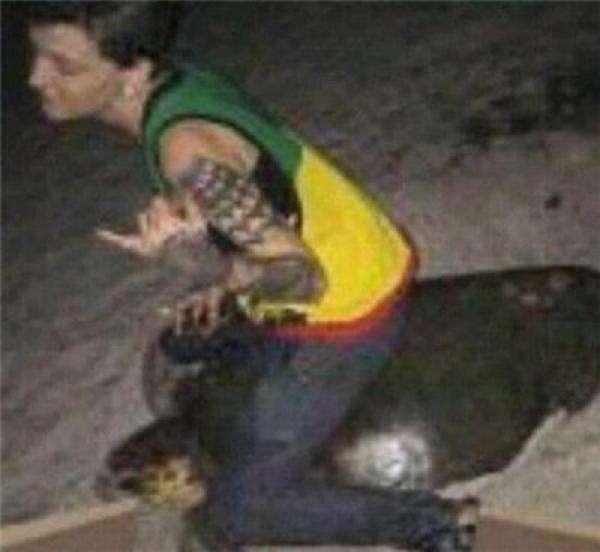 美国女子骑海龟拍照 或面临5年监禁