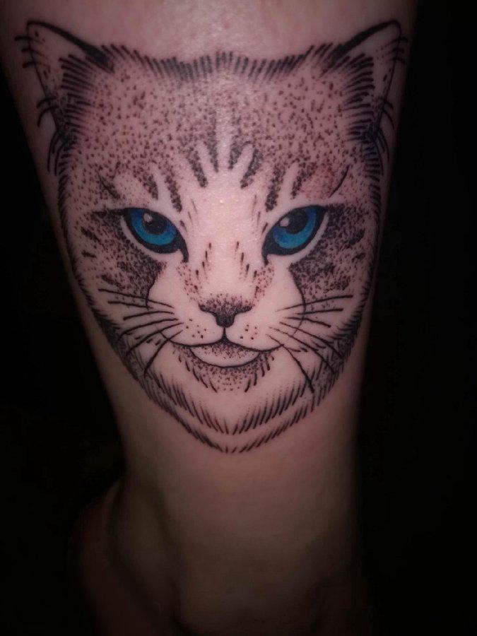 小猫咪纹身  女生小腿上彩绘的小猫咪纹身图片