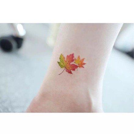 枫叶纹身图片:漂亮的一组枫叶纹身作品图片欣赏