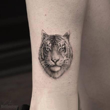一组个性的黑灰植物和动物创意纹身图片