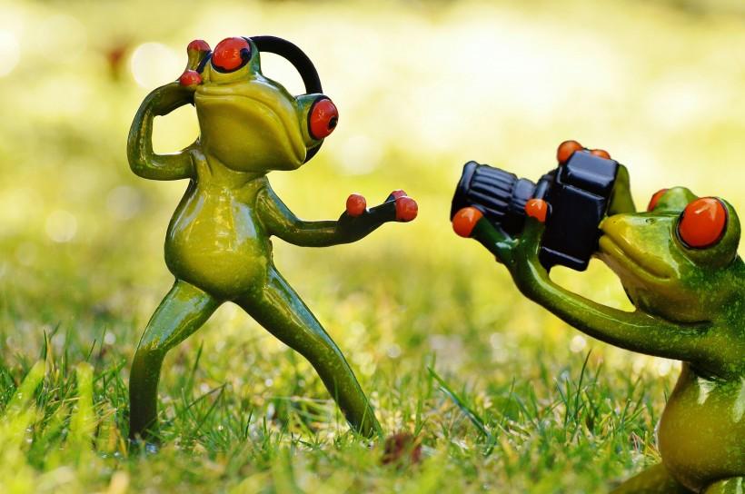 有趣的玩具青蛙图片(18张)