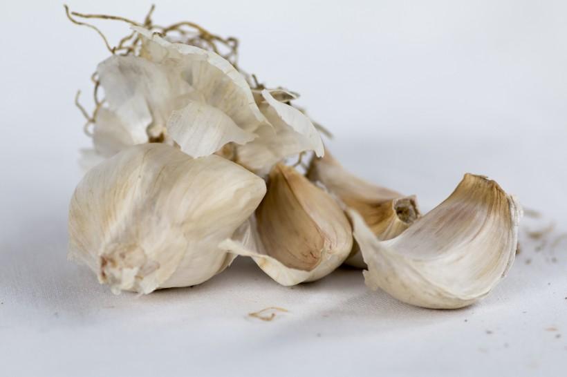 扁球形的大蒜图片(12张)