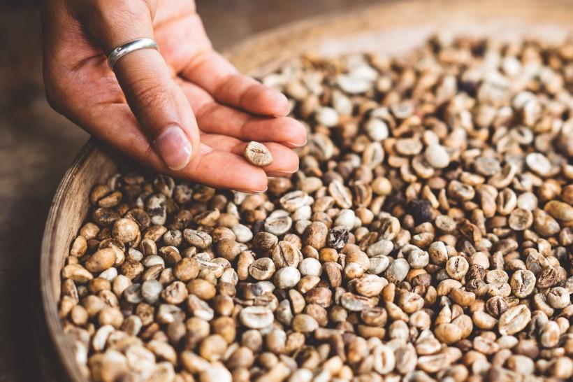 浓厚醇香的咖啡豆图片(14张)