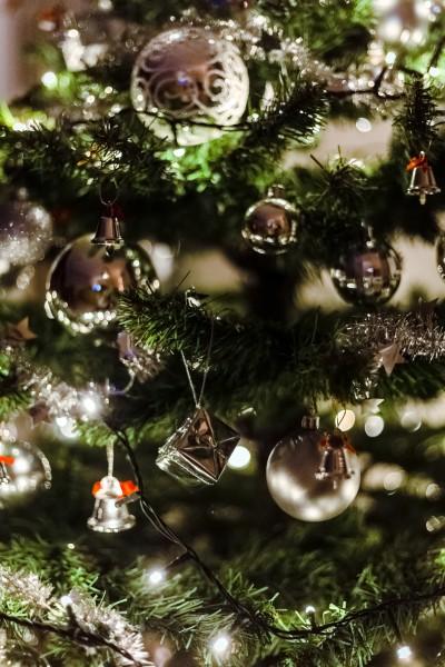 圣诞树上的小挂饰图片(12张)